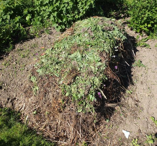 Kompostlimpa