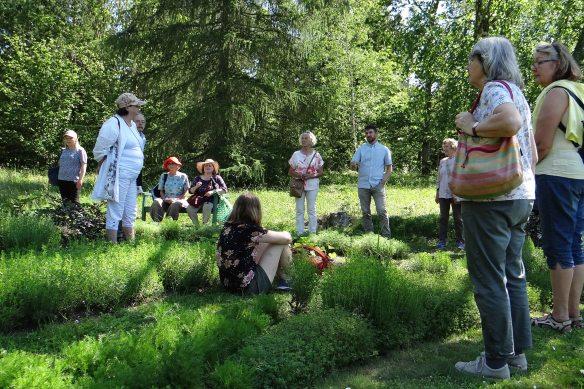 Örtagården2